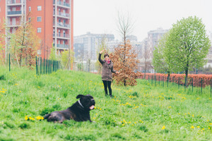 Young beautiful caucasian woman playing outdoor in a park with her dog - happiness, friendship concept