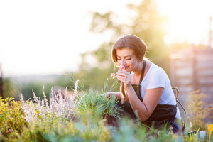Young gardener in her garden smelling flower, green sunny nature at sunset