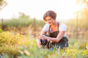 Young gardener in her garden with various plants, green sunny nature at sunset