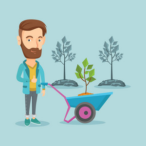 Young hipster gardener pushing wheelbarrow with tree and dirt in the park. Caucasian gardener with wheelbarrow on the background of newly planted trees. Vector flat design illustration. Square layout.