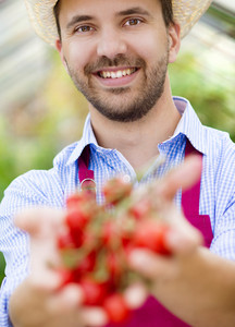 Young male gardener working in the greenhouse