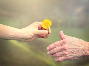 Young woman giving a dandelion to senior woman