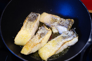 Zander fish fillets in a frying pan