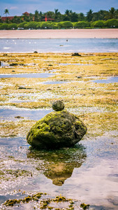 Zen-like Stones Covered with Moos on Beach during Low Tide, Nice Water Reflection, Nusa Dua, Bali, Indonesia