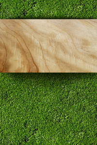 Grass And Wood Board