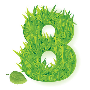 Grass Vector Numbers. Eight