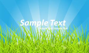 Grassline Banner Design