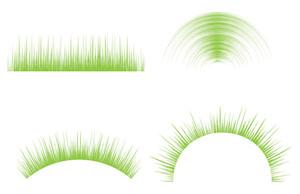 Grassline Vectors
