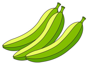Green Bananas Vector