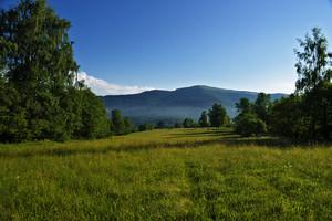 Green Bieszczady Mountain