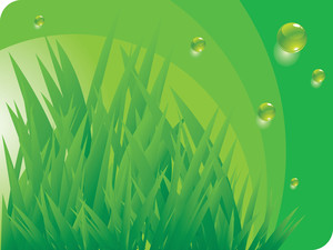 Green Eenvironmen. Vector Background