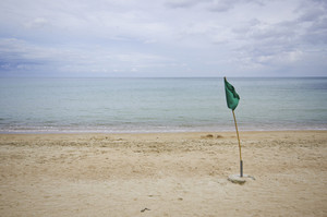 Green flag on the beach