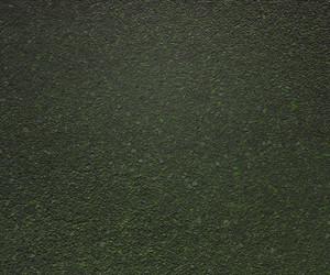 Green Grunge Backdrop