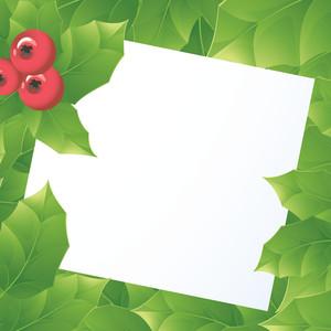 Green Holly Vector Card.
