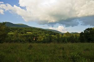 Green Landscape In Poland