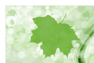 Green Leaf Bokeh Vector