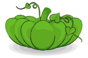 Green Pumpkin Vegetable