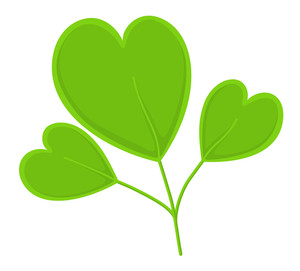 Green Shamrock Vector Design