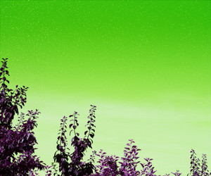 Green Sky Background