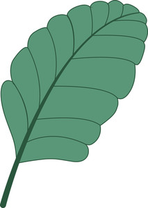 Green Vector Leaf