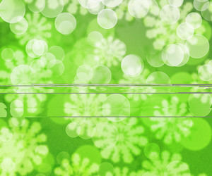 Green Winter Bokeh Background