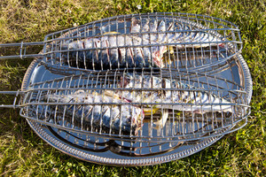 Grilled Fishes