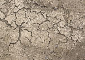Ground Texture 25