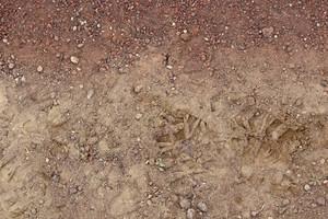 Ground Texture 27
