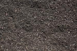 Ground Texture 40