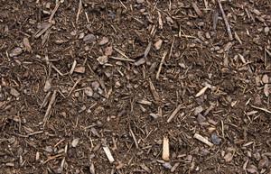 Ground Texture 41