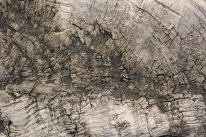 Ground Texture 49