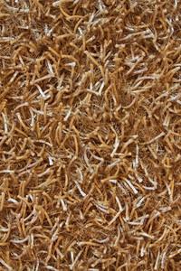 Ground Texture 4