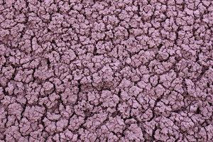 Ground Texture 79