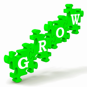 Grow Puzzle Shows Maturity And Growth