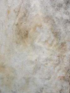 Grunge 63 Texture