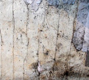 Grunge Background Texture 37