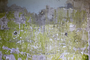 Grunge Concrete Wall 16