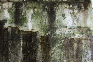 Grunge Concrete Wall 17