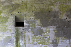 Grunge Concrete Wall 29