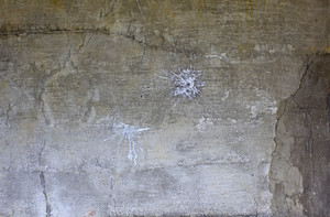 Grunge Concrete Wall 42
