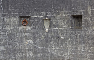 Grunge Concrete Wall 50