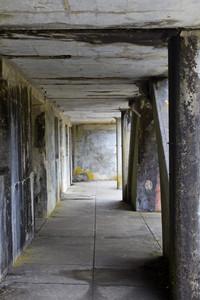 Grunge Concrete Wall 71