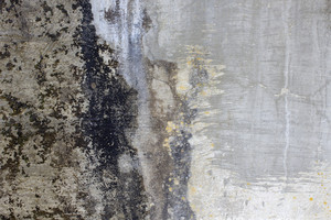Grunge Concrete Wall 8