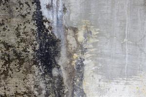 Grunge Concrete Wall 8
