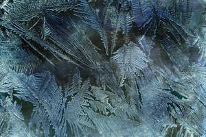 Grunge Frost 2 Texture