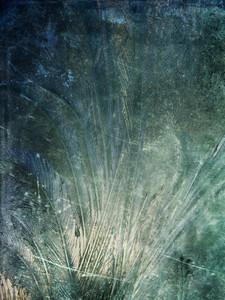Grunge Frost 4 Texture