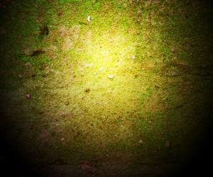 Grunge Green Wall Dark Background