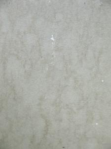 Grunge Light 51 Texture