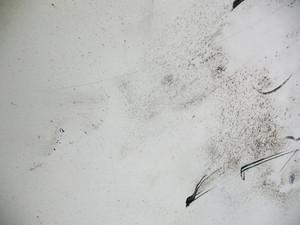 Grunge Markerboard 6 Texture
