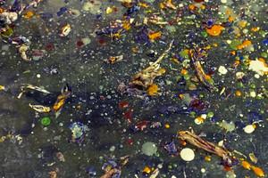 Grunge Paint Drops Texture